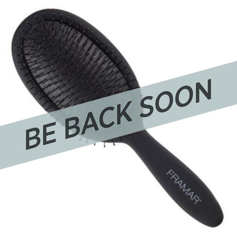 Framar FB-DT-BLK Detangle Brush Black to Future