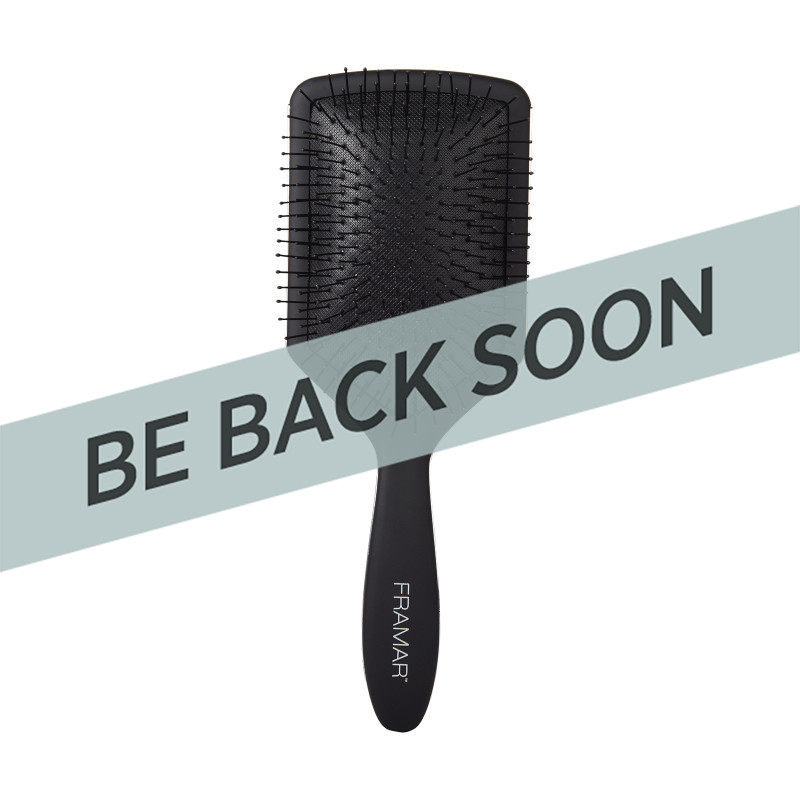 Framar FB-PB-BLK Paddle Brush Black to t