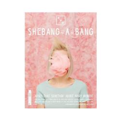 Evo Shebang-a-bang Display Card Set (2)
