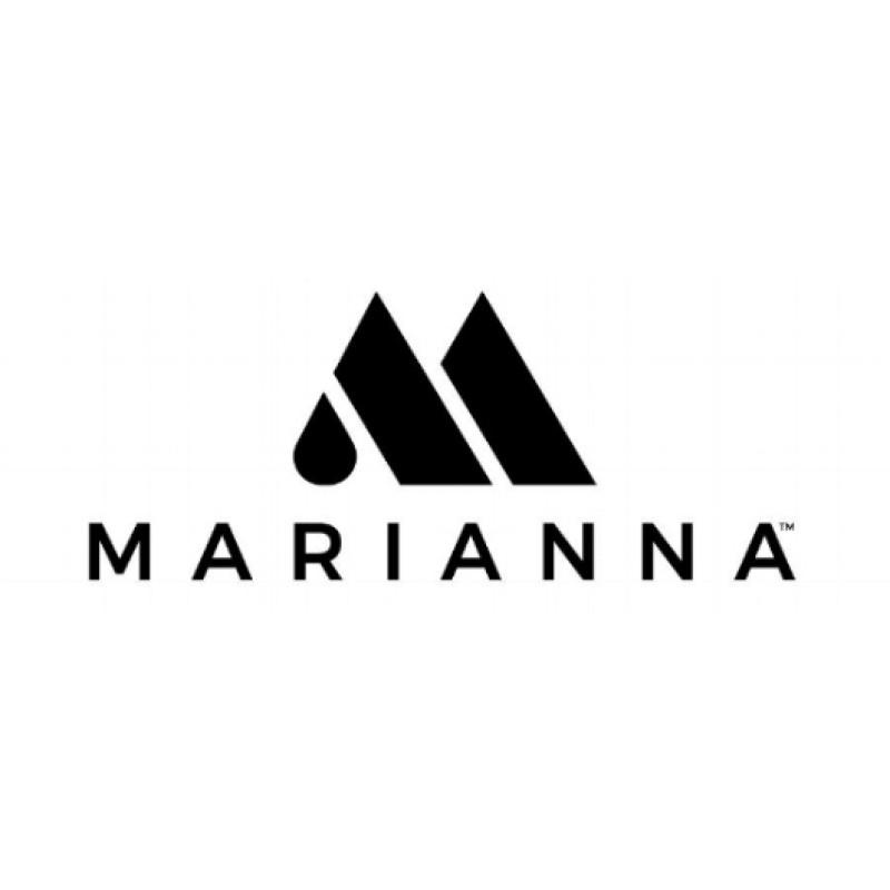 Marianna 12 Column Appointment Book 805