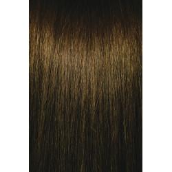 ChromaSilk 7.31 Golden Ash Blonde 7Ga 90ml
