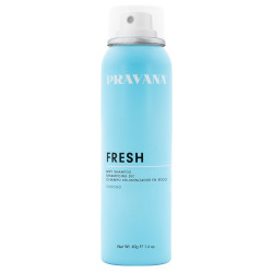 Pravana Fresh Dry Shampoo Mini 40g