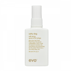 Evo Salty Dog Salt Spray Mini 50ml
